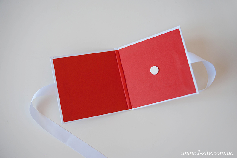 разработка паковки для диска и фотографий Irina Leytan
